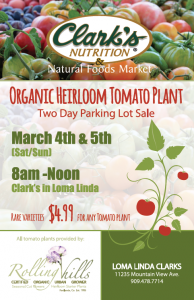 Heirloom Tomato Plant Parking Lot Sale